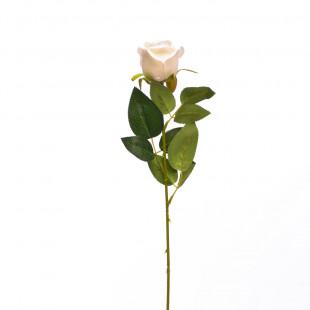 FLOR ROSE 20 5 BLANCA